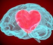 Great Sex & The Brain